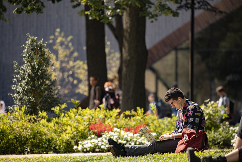 Student studying on a green lawn